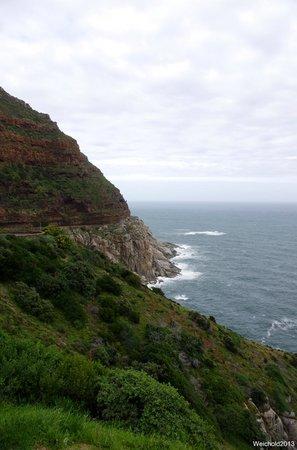 Dongola Guest House: Chapman's Peak stop