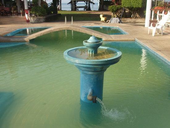 Bayview Inn: pool