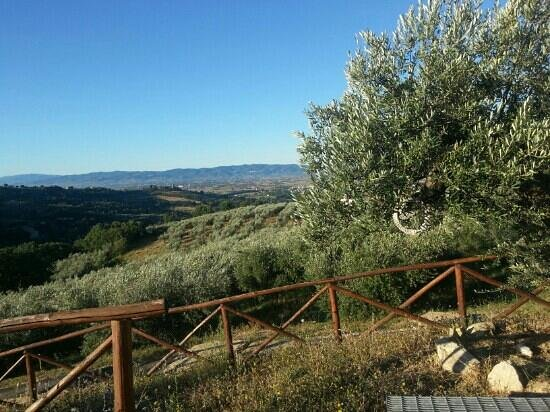 Casale Angelini: il panorama 1