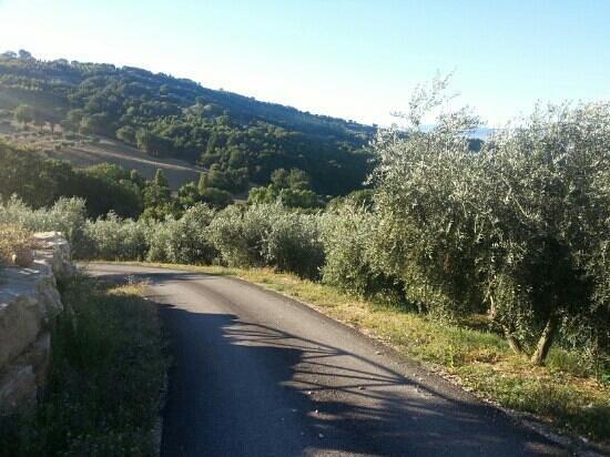 Casale Angelini: il panorama 2