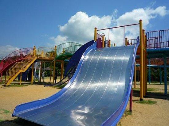 Sennan Satoumi Park: イルカ公園