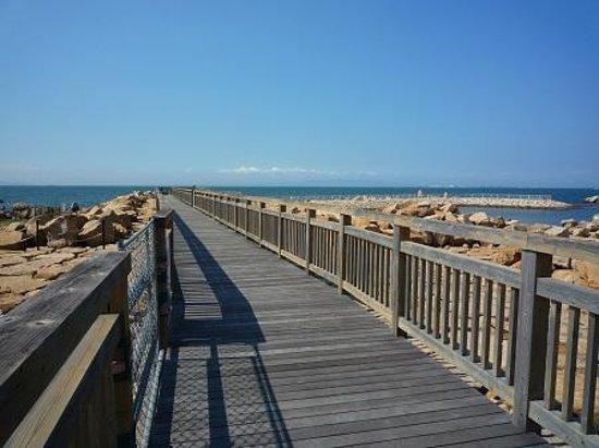 Sennan Satoumi Park: 人工海へと渡る桟橋