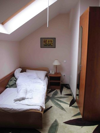 Ana Airport Hotel: Chambre Simple (pour 1 Personne)