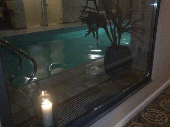 Hotel Villa Hugel : Piscine
