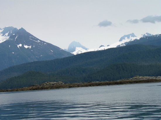 Alaska Galore Tours : Scenery  - you will see much better than this photo!