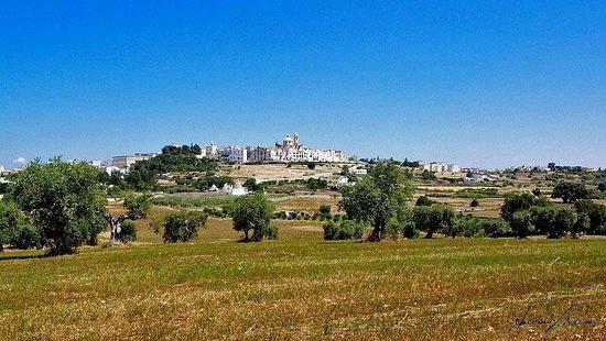 Sagra Pirotecnica: panorama