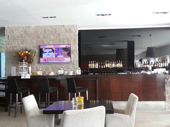 Virgo Hotel and Spa - Las Lenas: vista del bar del lobby
