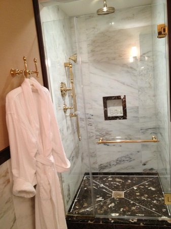 Hotel Plaza Athenee New York: shower in room