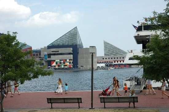 Sleep Inn & Suites Downtown Inner Harbor: Water Taxi was $12 all day