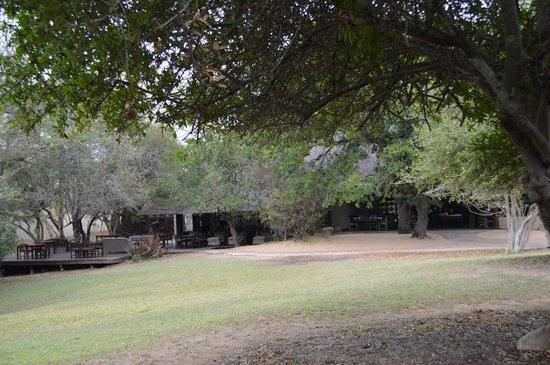 andBeyond Ngala Safari Lodge: Lodge Ngala