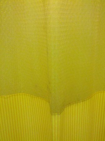 Days Inn Milan/Cedar Point South: Mildew on the shower curtain