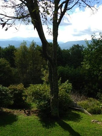 Archer's Mountain Inn: View from Blue Ridge Room