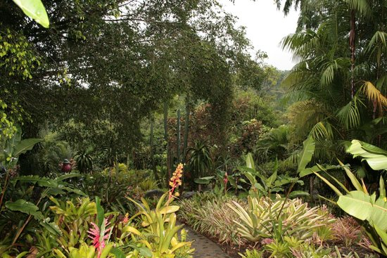 Xandari Resort & Spa: The walk to our room