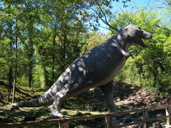 T rex foto di parco della preistoria rivolta d 39 adda for T rex location