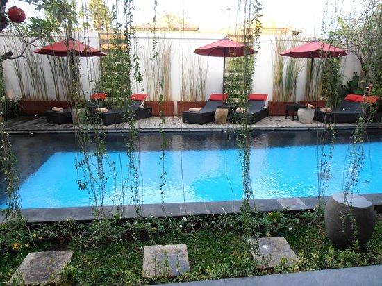 Kamar Kamar Rumah Tamu: pool view
