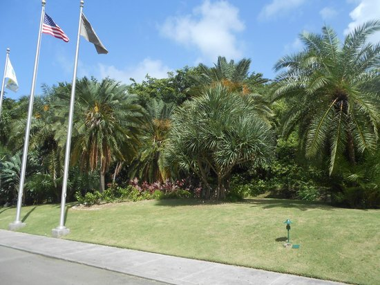 Renaissance St. Croix Carambola Beach Resort & Spa: grounds