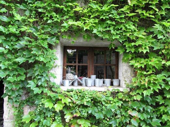 Ami Chenin : window of the breakfast area