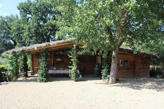 Podere La Strega: Aussicht auf einen Teil des Gartens