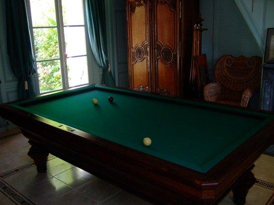 Hotel l'Ecrin: Billiard room