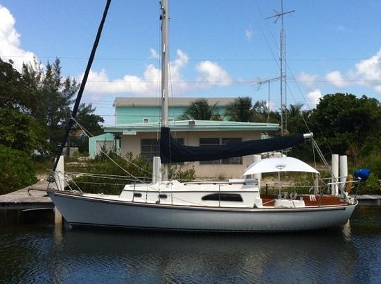 Bimini Magical Vacation B & B : New Day Sailboat Dolphins Stingrays