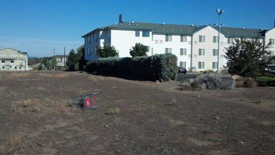 Motel 6 Redmond: Pet walking area: Glass, trash and poop