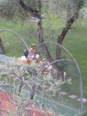 Club Hotel Olivi: titolare che taglia l erba in vestito da sera!!!:)