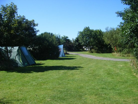 Warcombe Farm Camping Park: Lovley clean site !