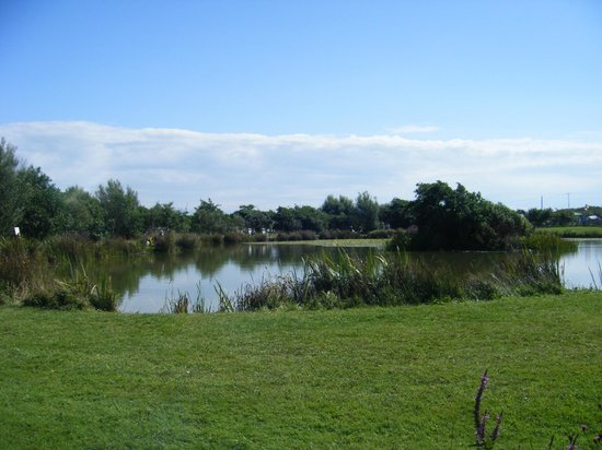 Warcombe Farm Camping Park : Lovley clean site !