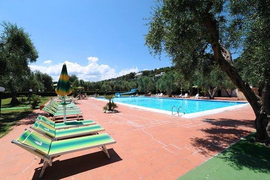 Camping Village Parco degli Ulivi: Solarium
