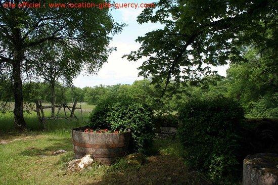Les Gîtes du Mas d'Aspech dans le Lot en Quercy : un près est à votre disposition près du gite lot quercy location gite  www.location-gite-quercy.