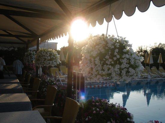 Hotel Sirenetta: Deliziosa vacanza