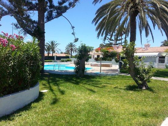 Santa Barbara Apartments: Grönska och pool