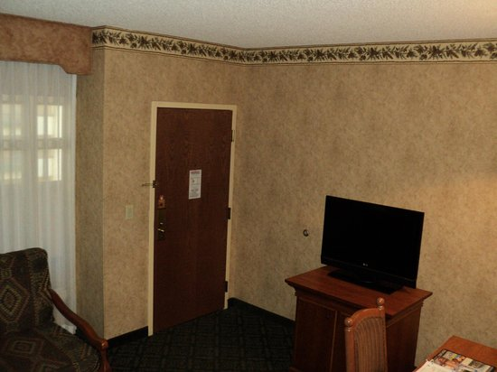 Embassy Suites by Hilton Dallas DFW Airport North: Room