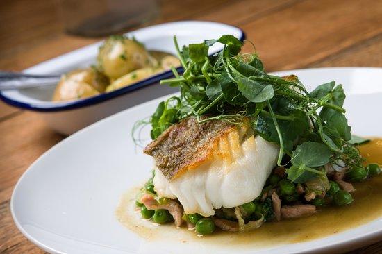 Minster, UK: Loin of Cod, peas lettuce & bacon