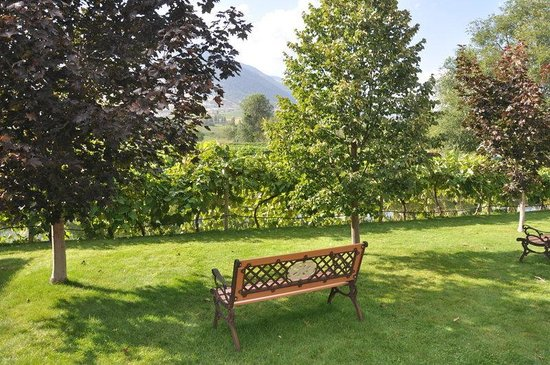 Silver Sage Winery: restful setting