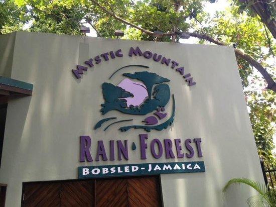 Rainforest Adventures: Mystic Mountain