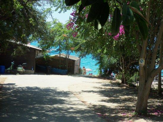 Hotel Residence Rosy: vista della spiaggia