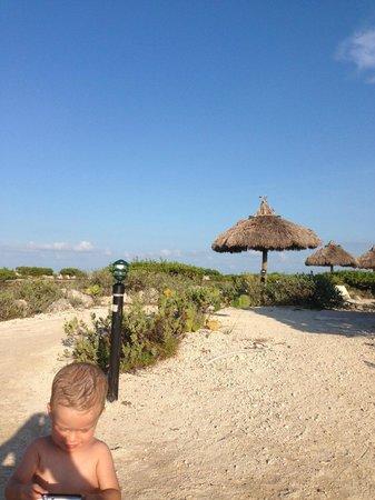 Hawks Cay Resort: Salt Water Lagoon