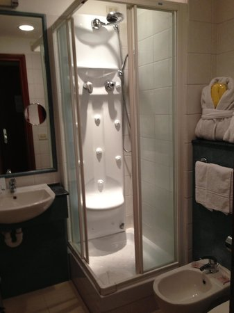 BEST WESTERN Hotel Spring House: Clean but cozy bathroom; shower with working water jets.
