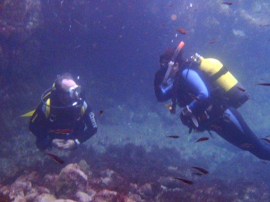 El Cortijo Subacuático