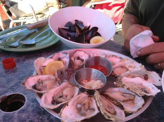 wharfside seafood grille: oyster and mussels, yum!