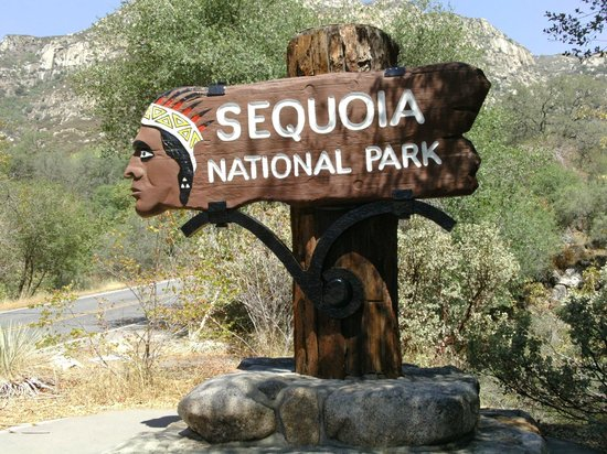 Gateway Restaurant and Lodge: sequoia sign