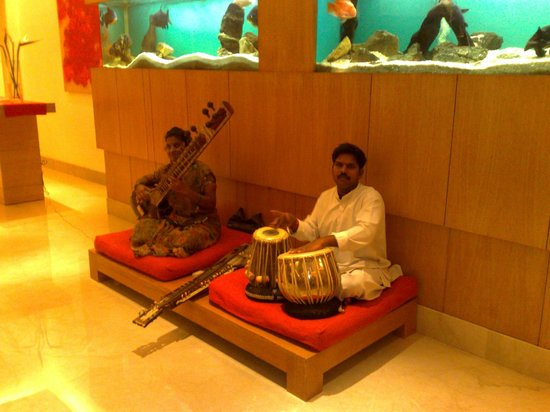 Trident, Chennai: Live music in Trident Hotel