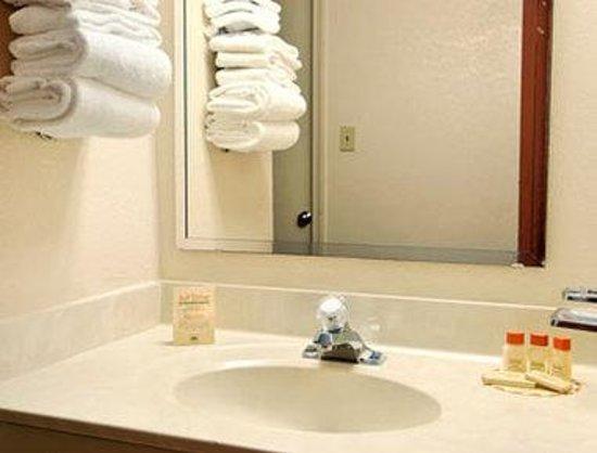 Days Inn Leesburg: Bathroom