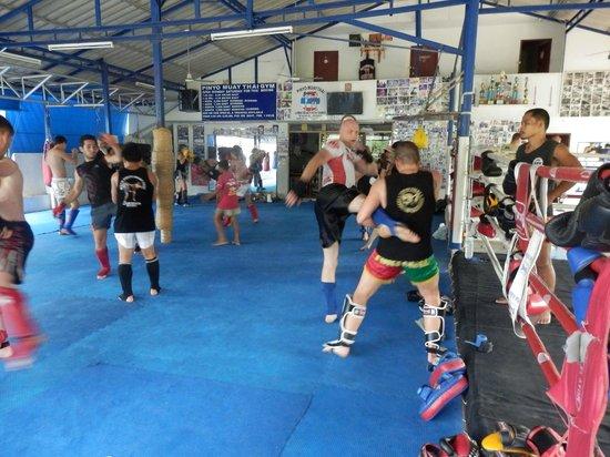 Wech Pinyo Muay Thai : Training