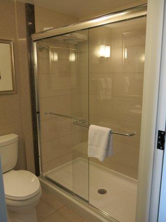 Hilton Garden Inn Toronto Downtown: shower