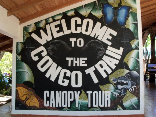 The Congo Trail Canopy Tour: Congo Trail