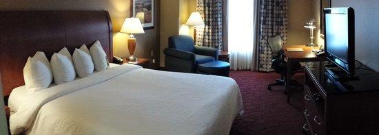 Hilton Garden Inn Chicago O'Hare Airport: Basic Room