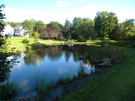 Trumbull House Bed and Breakfast : Beautiful pond on the grounds with several places to sit and relax