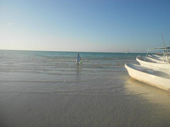 Hotel Maya Inn: Zona de Playa